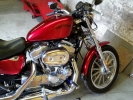 candy red harley